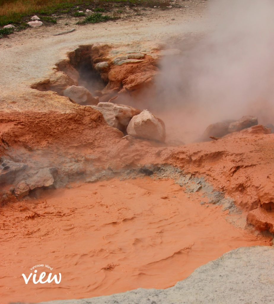 Mud Hot Springs - Yellowstone National Park highlights, and tips and tricks on making the most of your trip.